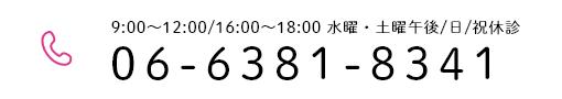 06-6381-8341